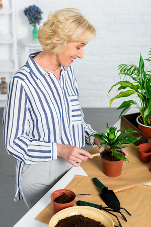 smiling senior woman cultivating potted plants at home Stock Photo