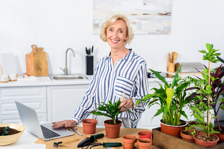 happy senior woman using laptop and cultivating houseplants at home Stock Photo