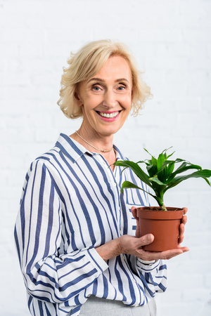 happy senior woman holding green houseplant and smiling at camera Stock Photo