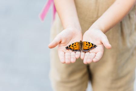 abgeschnittener Schuss des kleinen Kindes, das Schmetterling in den Händen hält Standard-Bild
