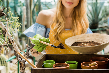 cropped shot of young woman working with soil and flower pots in greenhouse
