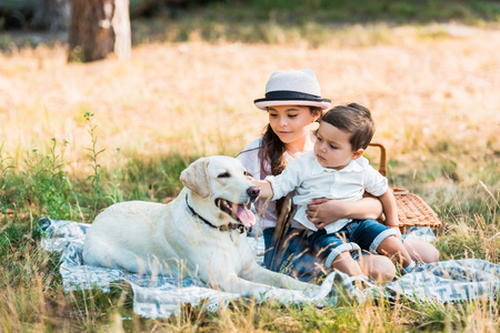brother and sister sitting on blanket with labrador dog Imagens - 105974016