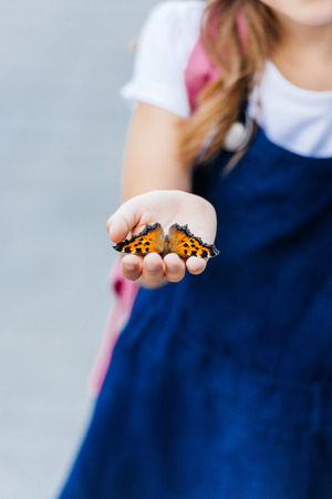 cropped shot of little child holding beautiful butterfly in hand