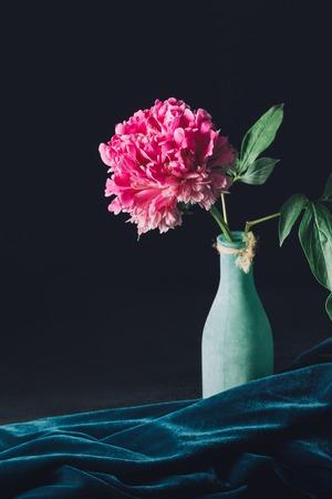 one pink peony flower in vase on dark background