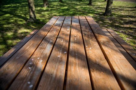 empty wooden table with white petals in park, copenhagen
