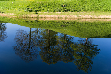 beautiful green lawn and trees reflected in calm water, copenhagen