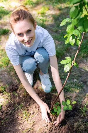 Vue de dessus du jeune volontaire souriant plantant un nouvel arbre
