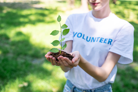 cropped view of female volunteer holding soil with sprout in hands Stock Photo - 107015464