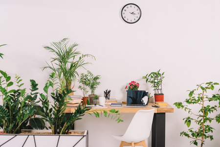 wooden table with potted plants and chair in workplace Stock Photo