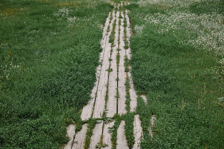 high angle view of wooden path and green grass in garden Stock Photo