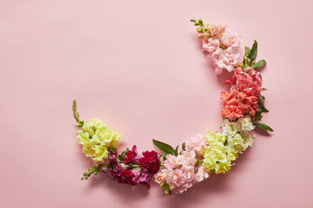 top view of beautiful tender pink, white, yellow and red flowers on pink background Stock Photo
