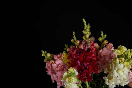 bouquet of beautiful various decorative gladioli flowers with buds isolated on black background