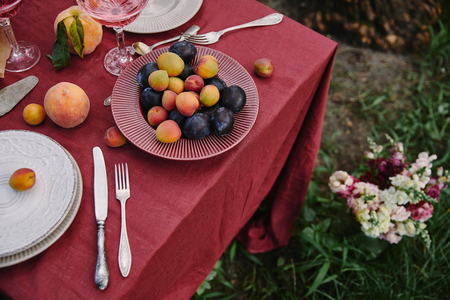 high angle view of plate with plums and apricots on table in garden