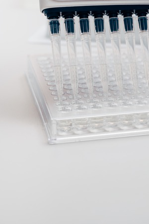 close up view of multichannel pipette in modern biotechnology laboratory