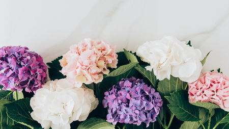 top view of background with colorful hydrangea flowers on marble surface