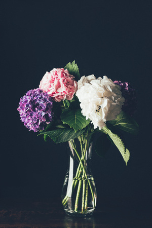pink, white and purple hortensia flowers in glass vase, on black 스톡 콘텐츠