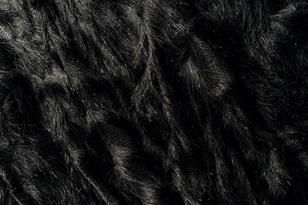 elevated view of furry black textile as background