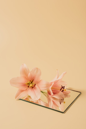 lily flowers reflecting in mirror on beige table Stock Photo