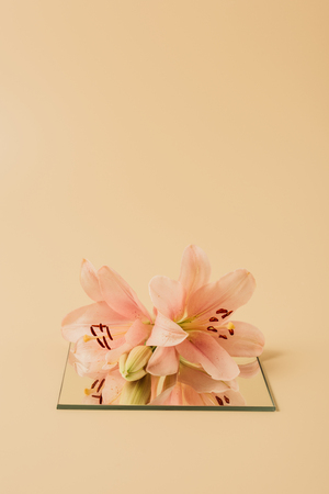 lily flowers on mirror on beige table Zdjęcie Seryjne