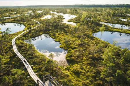 Luftaufnahme der hölzernen Brücke und der grünen Pflanzen herum in Riga, Lettland