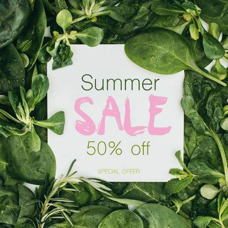 top view of white card with words summer sale and beautiful fresh green leaves and plants