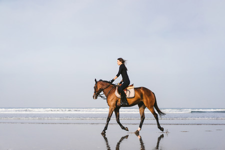 side view of young female equestrian riding horse on sandy beach Stock Photo