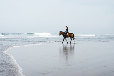 distant view of female equestrian riding horse on sandy beach