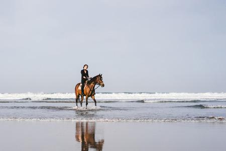 junges weibliches Reitpferd am Sandstrand