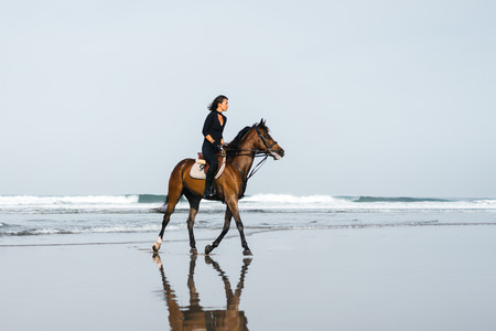 side view of young female equestrian riding horse on sandy beach Stockfoto