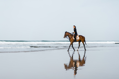 distant view of woman riding horse on sandy beach with ocean behind Stock Photo