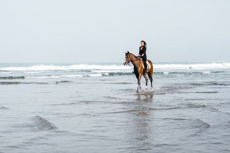 distant view of female equestrian riding horse in water Stock Photo