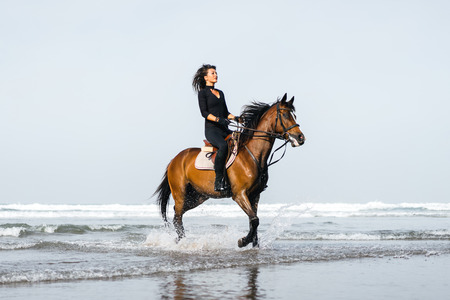young female equestrian riding horse in wavy water on sandy beach 스톡 콘텐츠