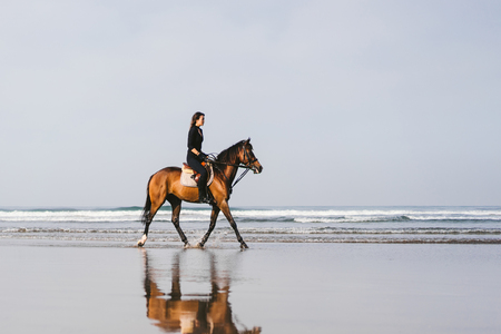 young female equestrian riding horse on sandy beach Stock Photo