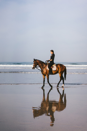 young female equestrian riding horse on sandy beach near ocean