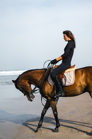 side view of female equestrian riding horse on sandy beach Stock Photo