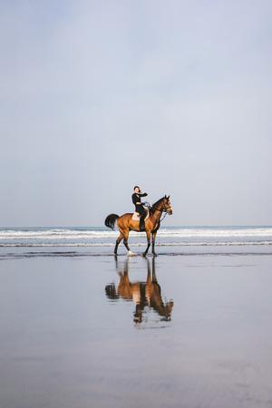 vista in lontananza femminile equestre a cavallo sulla spiaggia