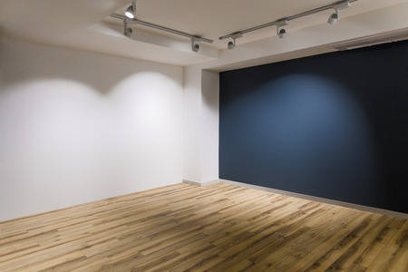 Empty room with dark and white walls and wooden floor
