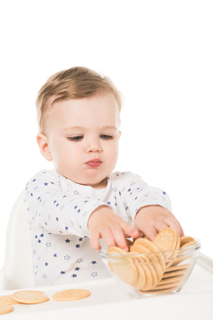 little boy taking cookies from bowl and sitting in highchair isolated on white background
