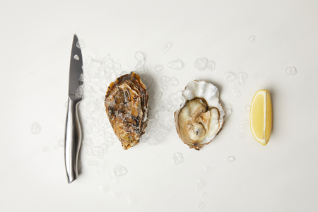 Oysters with lemon and knife on white table with ice Stockfoto