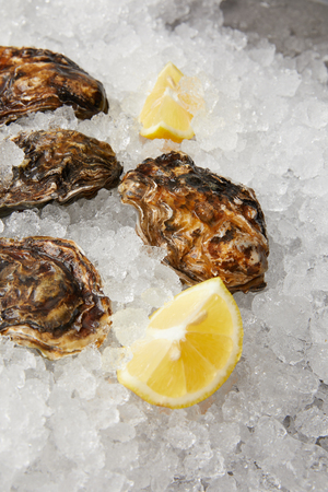 Refrigerated oysters with lemon slices on ice
