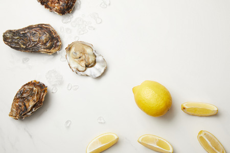 Fresh oysters with lemons on white table with ice