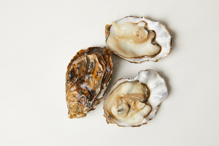 Open fresh oyster clams isolated on white Stockfoto