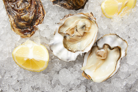 Fresh oysters and lemon slices on ice