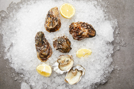 Cooled oysters served with lemons on ice