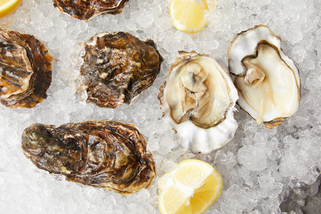 Fresh oysters and lemons served on ice