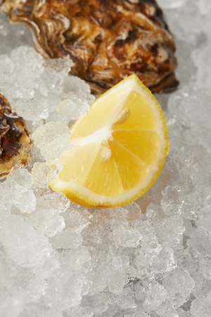 Lemon slice on ice by oyster clams