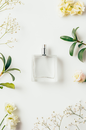 bovenaanzicht van fles parfum omgeven met bloemen en groene takken op wit