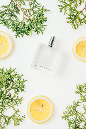top view of glass bottle of perfume with green branches and lemon slices on white tabletop