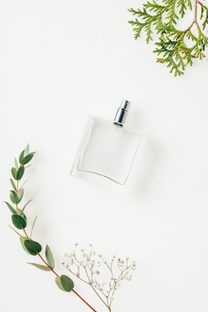 top view of bottle of perfume with green branches on white Stok Fotoğraf