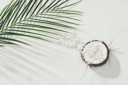 half of coconut with shavings and green palm leaves on white Stock fotó